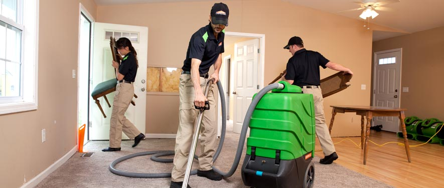 Rochester, NY cleaning services